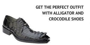 Hornback Shoes and Boots Alligator and Crocodile Footwear Care